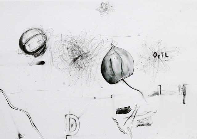 © Wilhelm Roseneder. Getrocknetes Leben, 2012. Zyklus Notizen/Notes. Gelpen auf Papier, 29,6x41,9 cm
