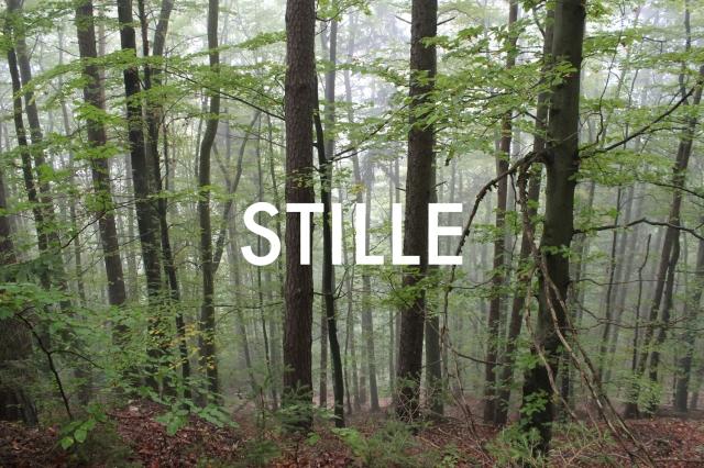 © Wilhelm Roseneder. STILLE Nr. 1510122, 2012.