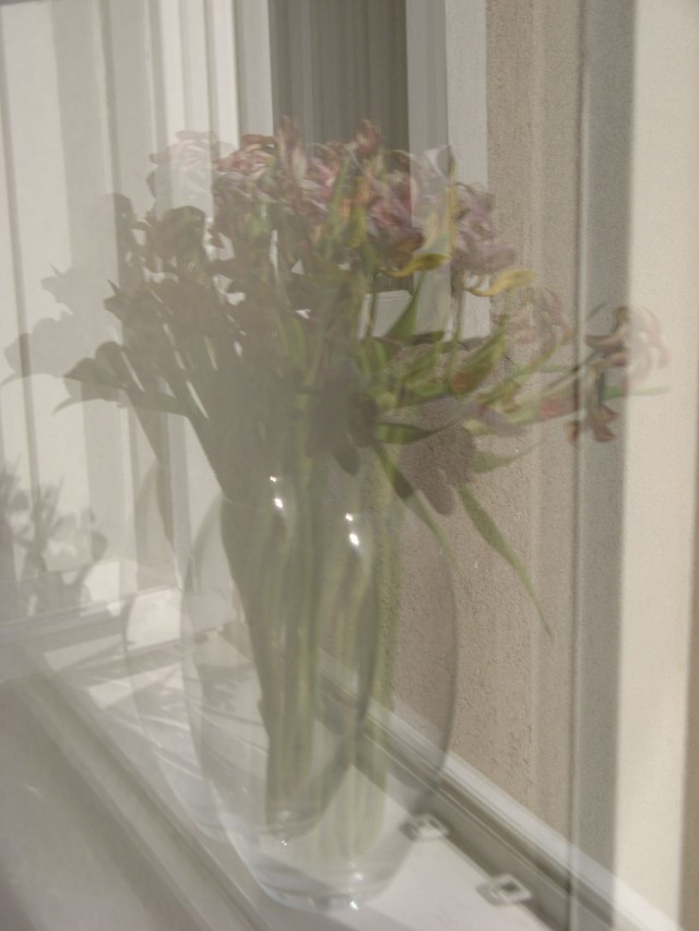 © Renate Egger. Spiegelung/Reflection. Tulpen/Tulips, 2011. Installation, photography