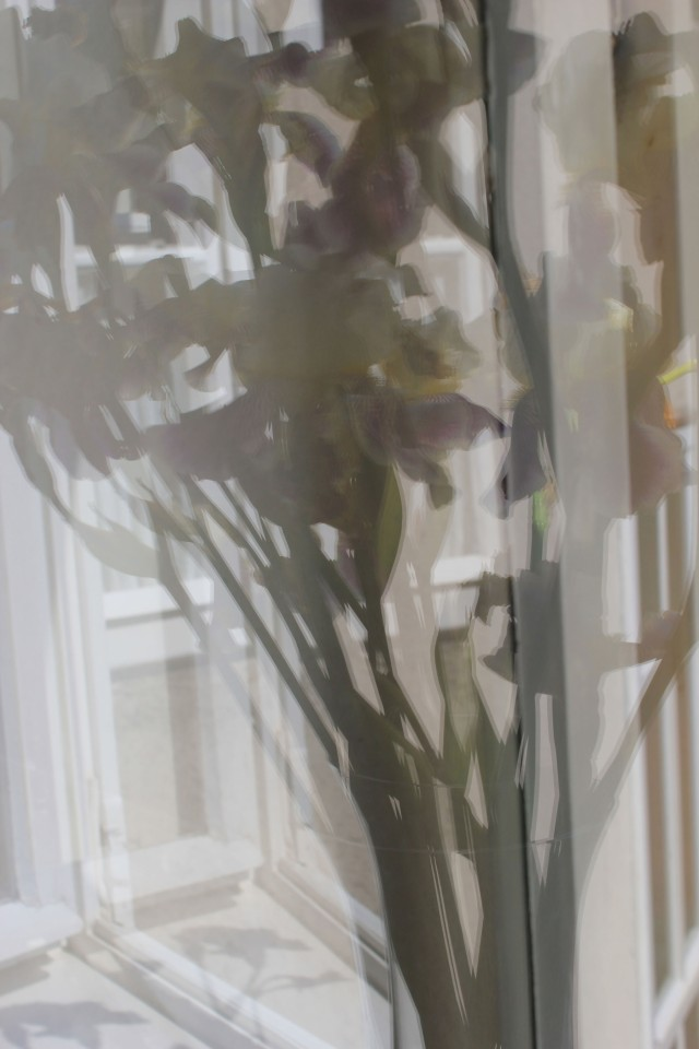 © Renate Egger. Lilien/Lilies, 2012. Series: Spiegelung/Reflection