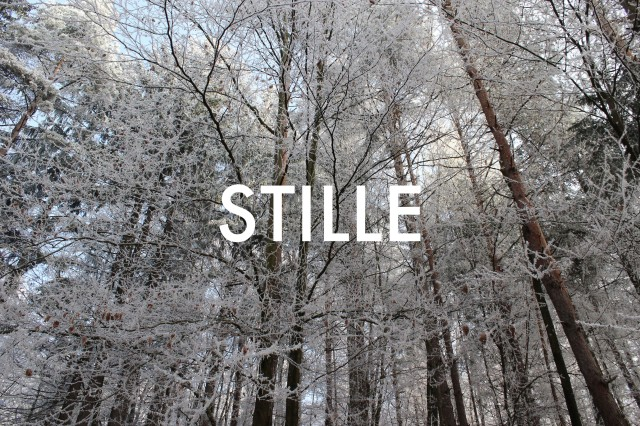 © Wilhelm Roseneder. STILLE Nr. 20180, 2013