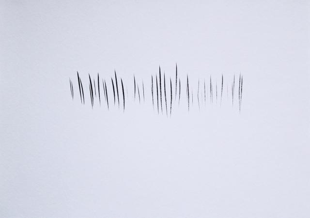© Renate Egger. Strukturen/Structures, 2011. Chinesische Tusche auf Papier/Chinese ink on paper, 24x34 cm