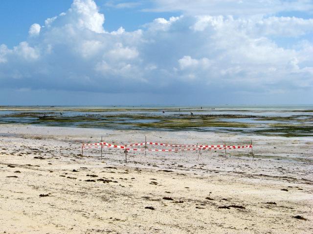 © Renate Egger. Paradies/Paradise. Absperrband, Holzstöcke/Barrier tape, wooden sticks. Jambiani, Zanzibar, Africa, 2011