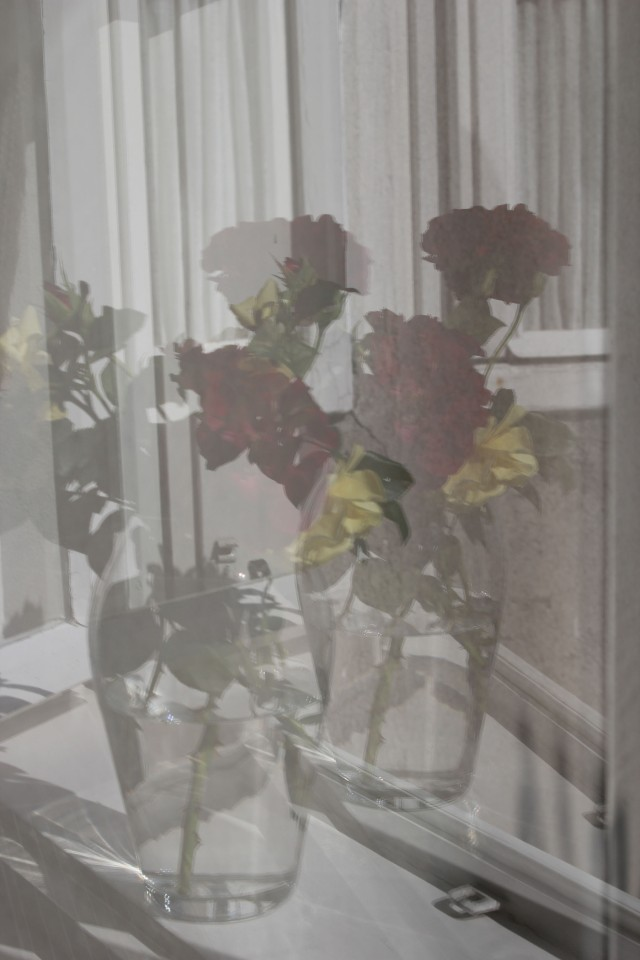 © Renate Egger. Rosenstrauß/Bouquet of roses, 2015. Series: Spiegelung/Reflection